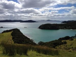 Views from Urupukapuka