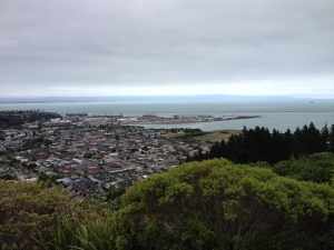 """View of Nelson from """"the centre of New Zealand"""""""